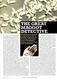 2003 03 The Sunday Telegraph The great maggot detective Will Hodgkinson 1.jpg